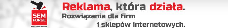 Marketing w wyszukiwarkach - Semforge.com